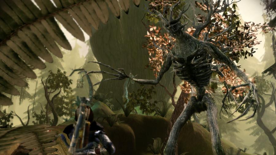 Dragon Age Origins Brecilian Forest