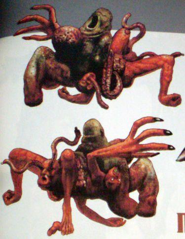 parasitenkur 3 wochen anleitung