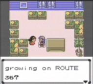 Can geodude learn flash in pokemon ruby