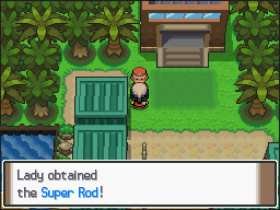 how to get the super rod in pokemon platinum