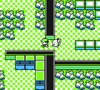 how to catch scyther in pokemon yellow